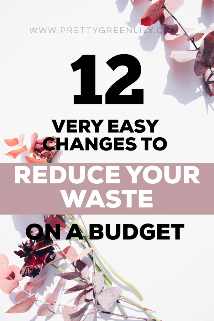 12 very easy changes to reduce your waste on a budget