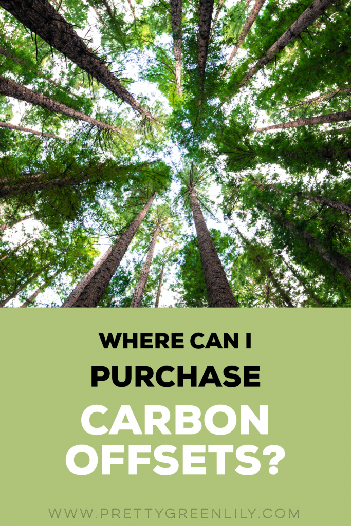 where to buy carbon offsets