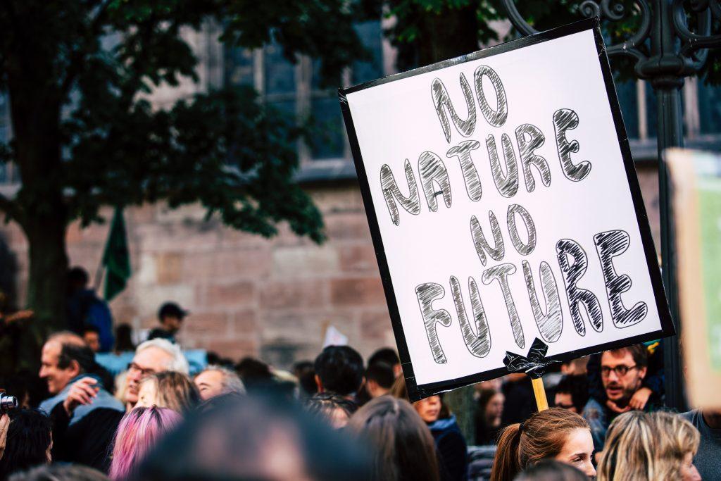 no nature no future - climate emergency